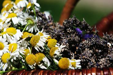 Essential oils not just for spa-products